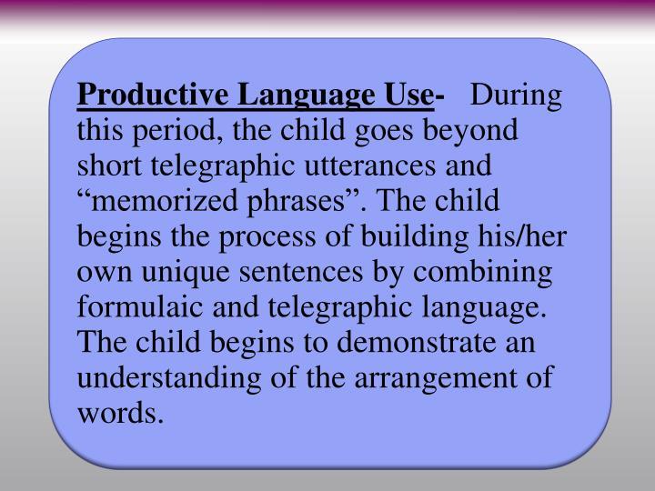 Productive Language Use