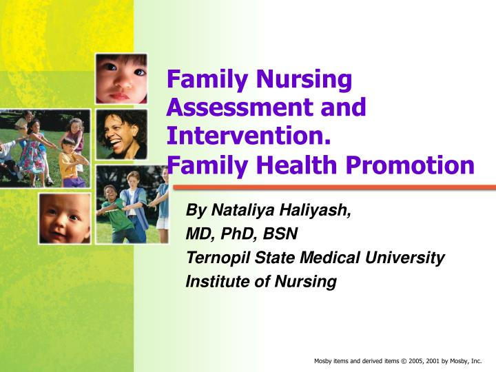 family nursing assessment and intervention family health promotion n.