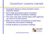 consortium lessons learned