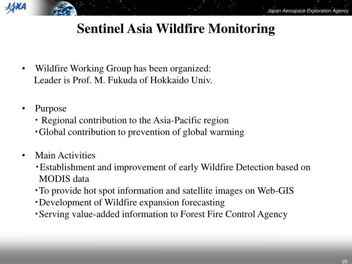 Sentinel Asia Wildfire Monitoring