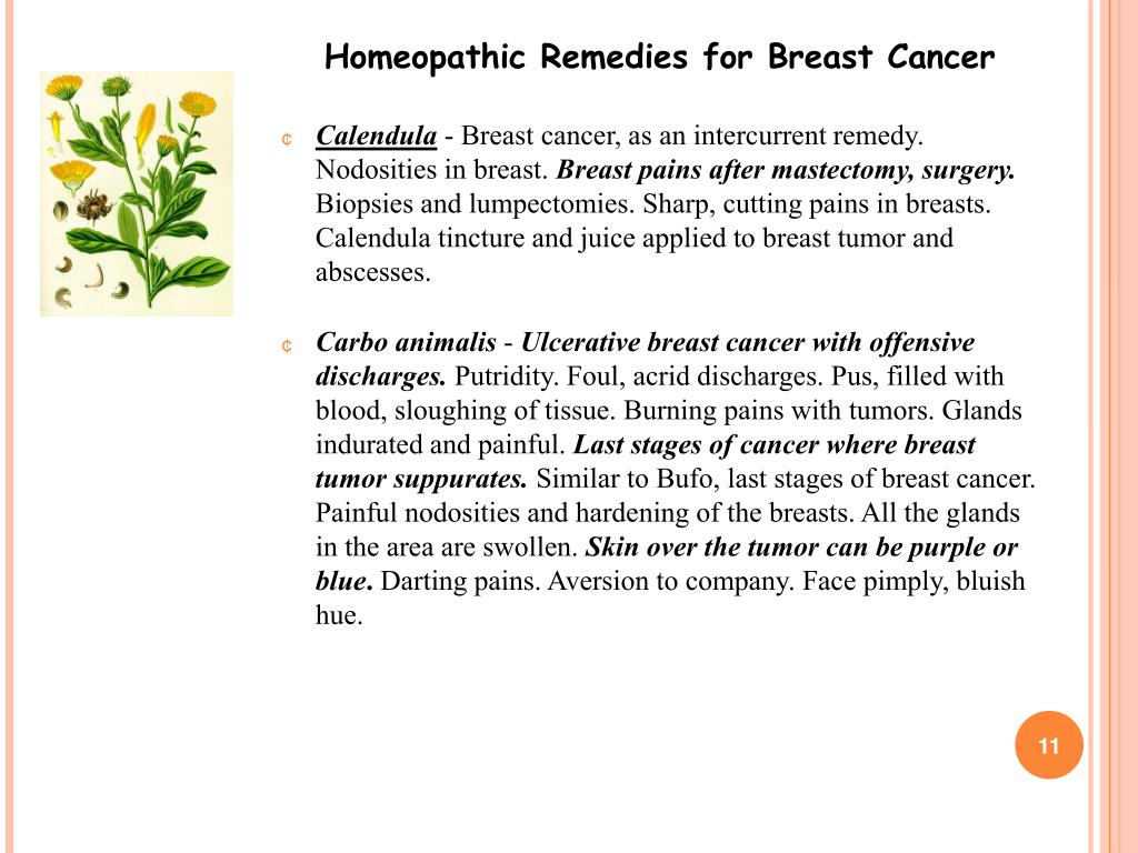 PPT - Homeopathic Remedies for Breast Cancer PowerPoint Presentation