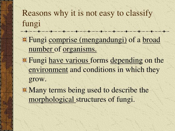 Reasons why it is not easy to classify fungi
