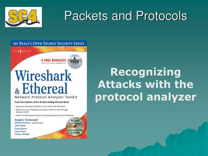 packets and protocols n.