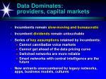 data dominates providers capital markets