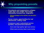 why pinpointing prevails