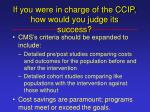 if you were in charge of the ccip how would you judge its success