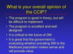 what is your overall opinion of the ccip