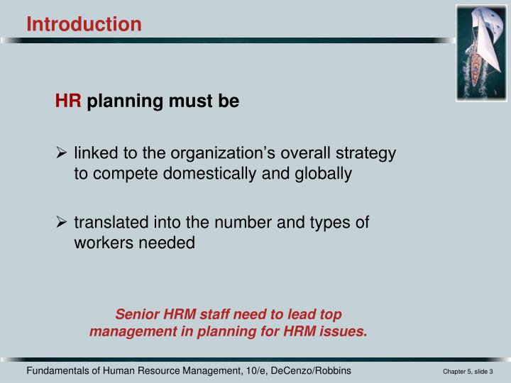 problems of human resource planning ppt