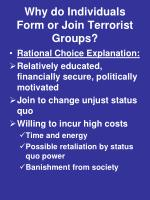 why do individuals form or join terrorist groups