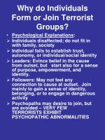 why do individuals form or join terrorist groups1