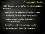 custom attributes