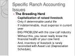 specific ranch accounting issues