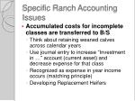 specific ranch accounting issues3