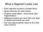 what a segment looks like