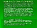 importance of cross market volatility spillovers