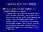 conceiving of tiny things
