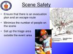 scene safety1