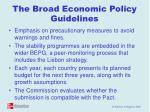 the broad economic policy guidelines
