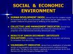social economic environment1