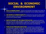 social economic environment2