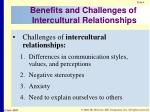 benefits and challenges of intercultural relationships1