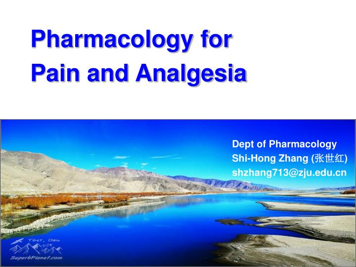 pharmacology for pain and analgesia n.