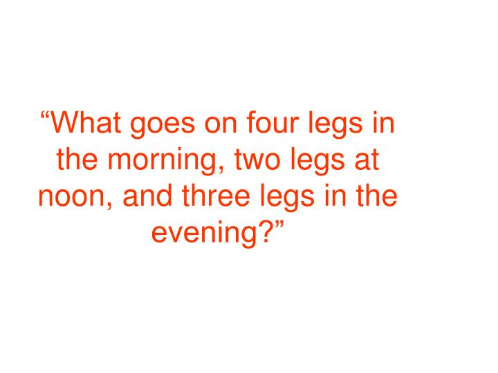 """""""What goes on four legs in the morning, two legs at noon, and three legs in the evening?"""""""