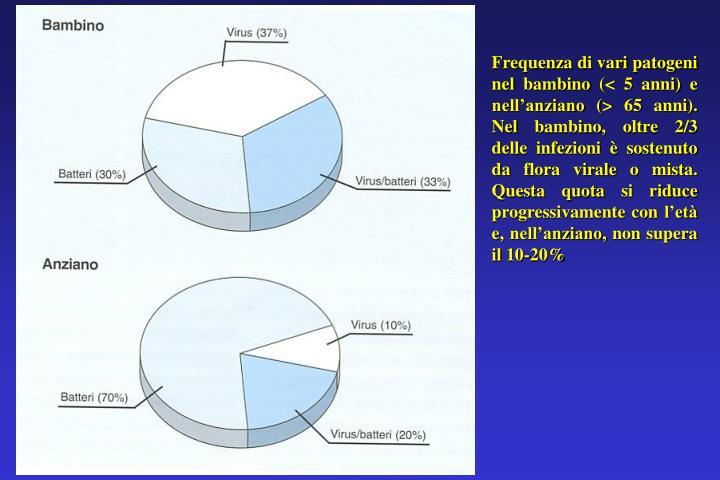 Frequenza di vari patogeni nel bambino (< 5 anni) e nell'anziano (> 65 anni). Nel bambino, oltre 2/3 delle infezioni è sostenuto da flora virale o mista. Questa quota si riduce progressivamente con l'età e, nell'anziano, non supera il 10-20%