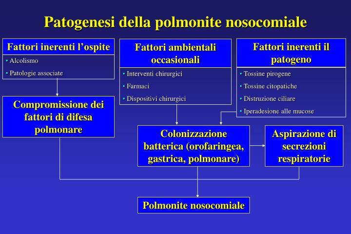Patogenesi della polmonite nosocomiale
