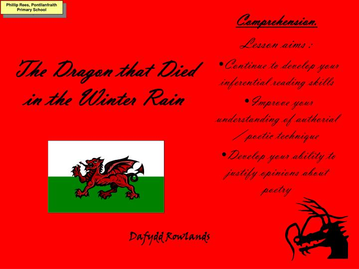 the dragon that died in the winter rain n.