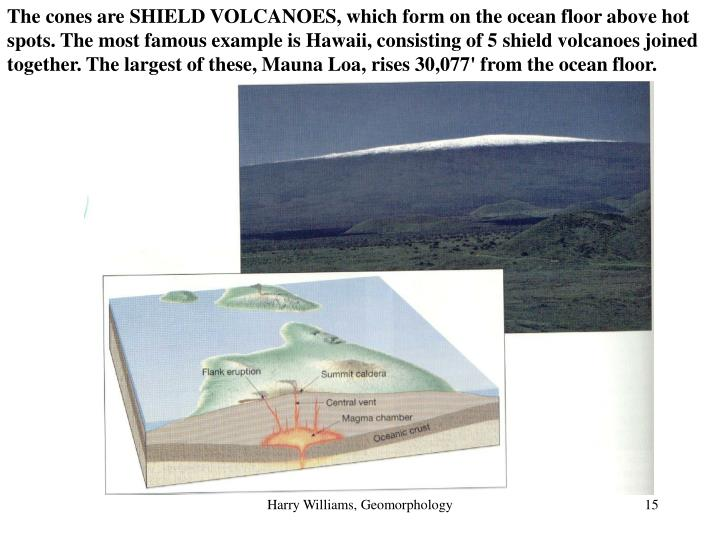 The cones are SHIELD VOLCANOES, which form on the ocean floor above hot spots. The most famous example is Hawaii, consisting of 5 shield volcanoes joined together. The largest of these, Mauna Loa, rises 30,077' from the ocean floor.