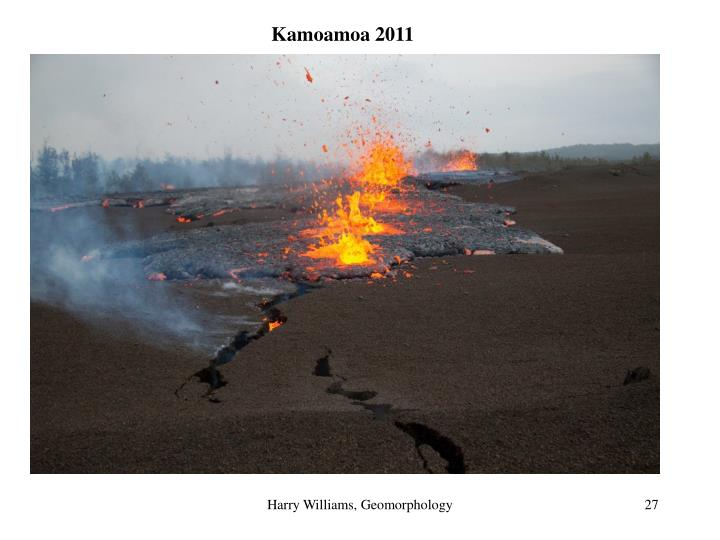 Kamoamoa 2011