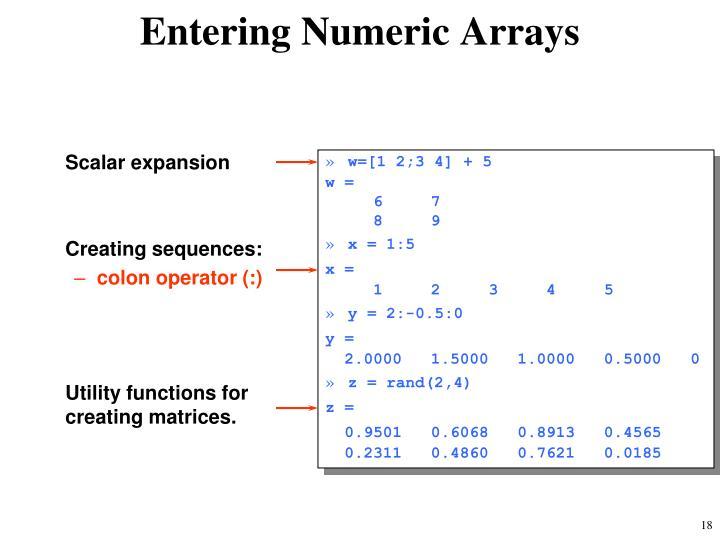 Entering Numeric Arrays