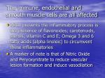 the immune endothelial and smooth muscle cells are all affected