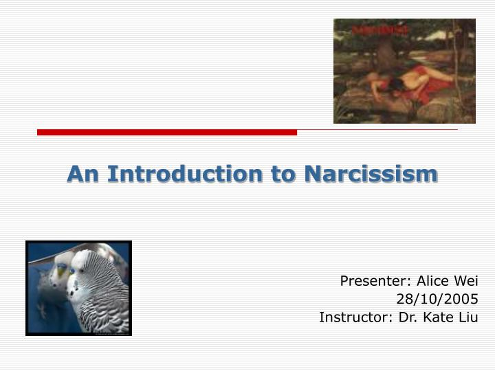 an introduction to narcissism n.
