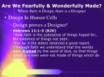 are we fearfully wonderfully made where there is design there is a designer19