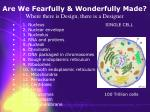 are we fearfully wonderfully made where there is design there is a designer21