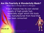are we fearfully wonderfully made where there is design there is a designer45