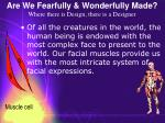 are we fearfully wonderfully made where there is design there is a designer49