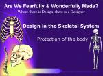 are we fearfully wonderfully made where there is design there is a designer51