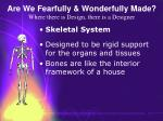 are we fearfully wonderfully made where there is design there is a designer57
