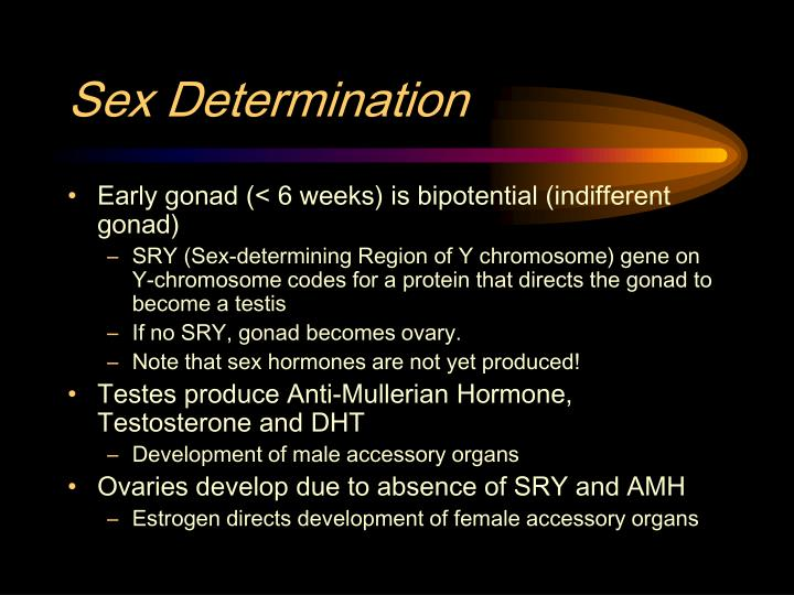 Sex Determination
