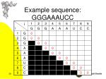 example sequence gggaaaucc