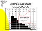example sequence gggaaaucc1