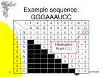 example sequence gggaaaucc3
