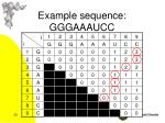 example sequence gggaaaucc5