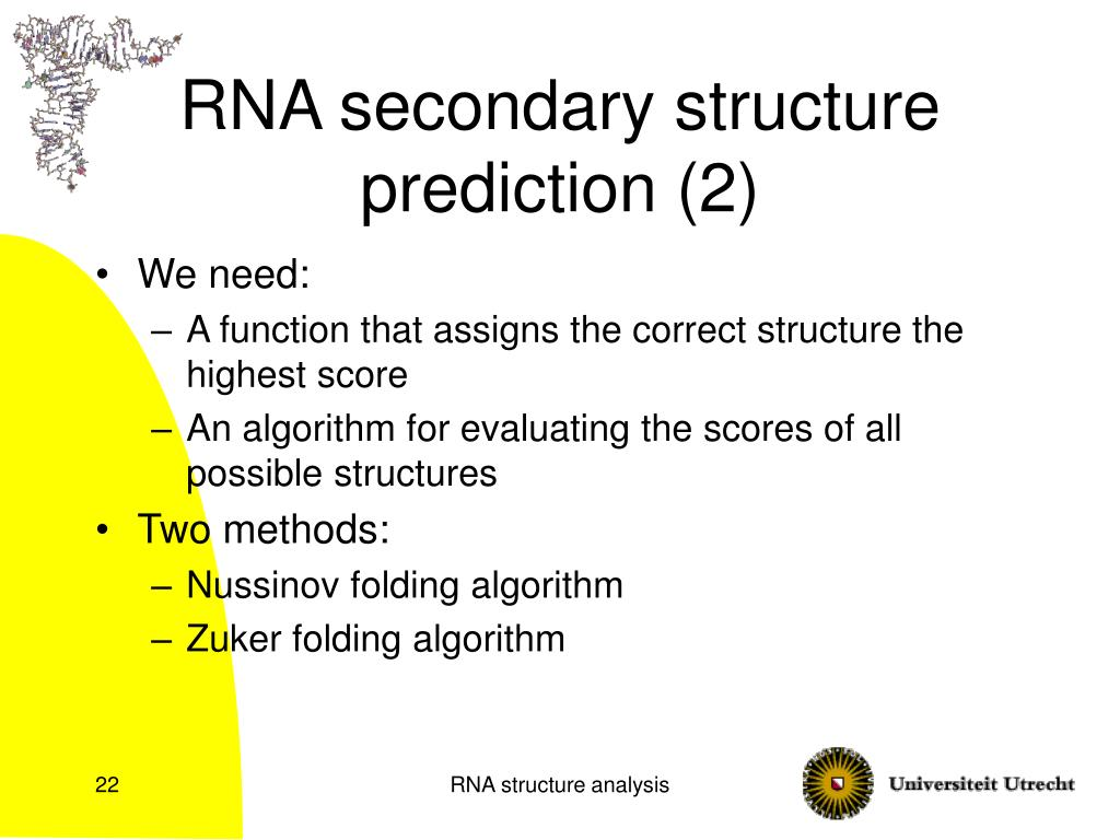 PPT - RNA structure analysis PowerPoint Presentation - ID:1411714