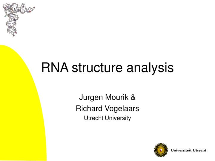 rna structure analysis n.