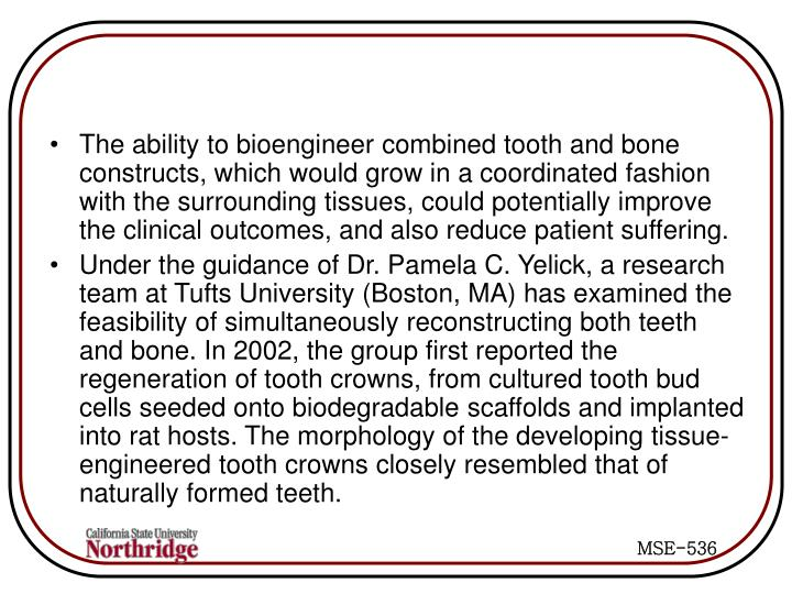 The ability to bioengineer combined tooth and bone constructs, which would grow in a coordinated fashion with the surrounding tissues, could potentially improve the clinical outcomes, and also reduce patient suffering.