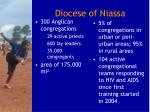 diocese of niassa